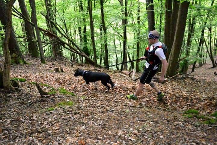 Läufer und Hund im Wald mit Leine lässt sich ziehen Vorurteile