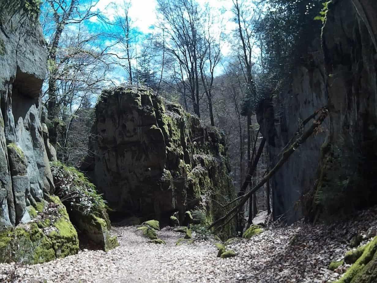Trailrun-Muellerthal36