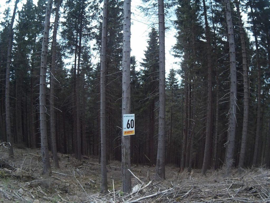 44_Rennsteiglauf_48