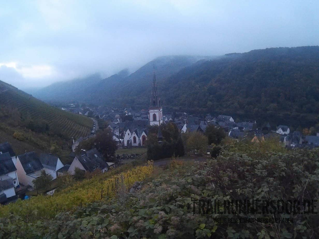 moselsteig-solo-421