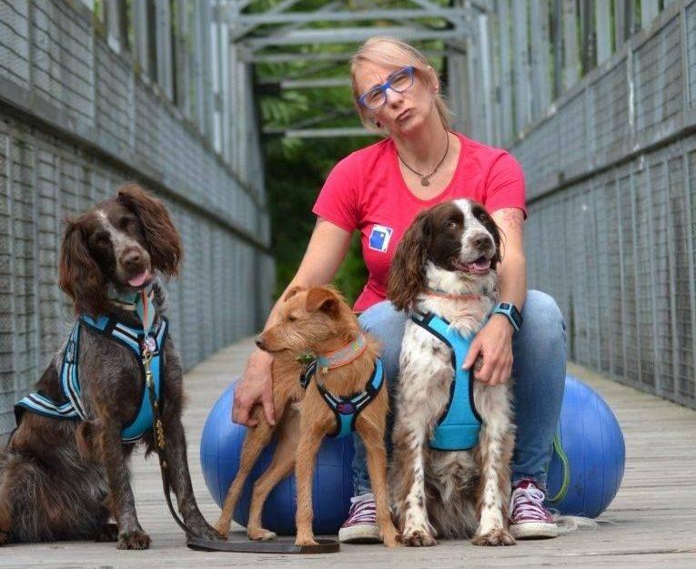 Canicross Hund Läuferin Nicole Stumpf
