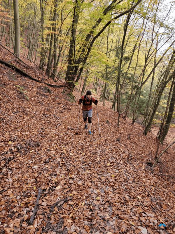 moselsteig trail run 10