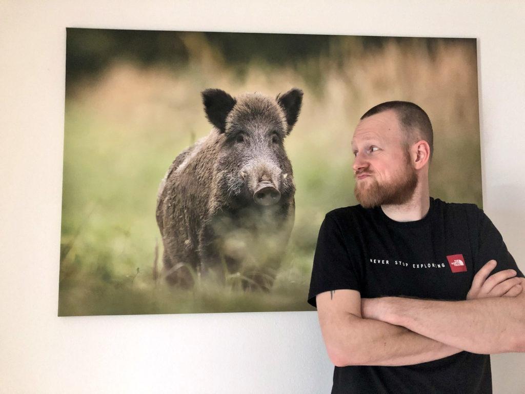 Trailrunnersdog Sascha Rupp