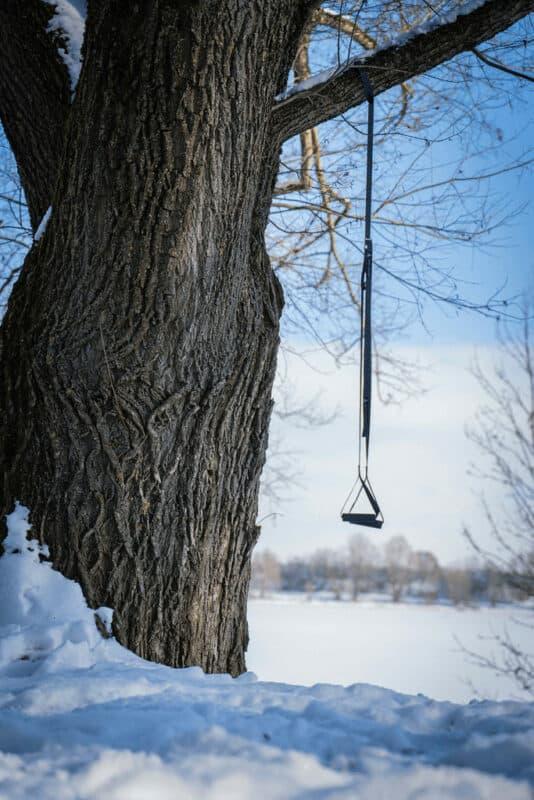 Schlingentrainer Sling Trainer am Baum