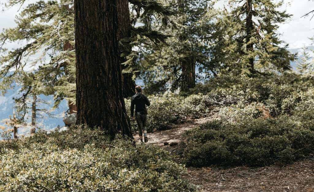 Trail Running - eine Trendsportart?
